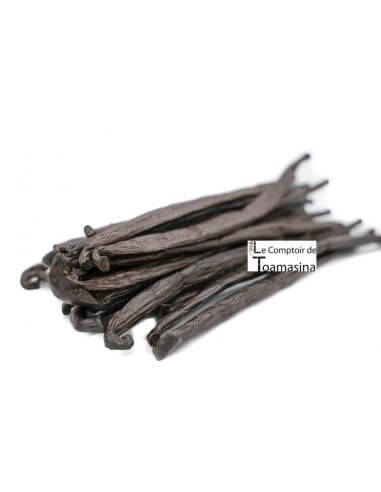 VANILLA PODS FROM TAHITI (LONG)