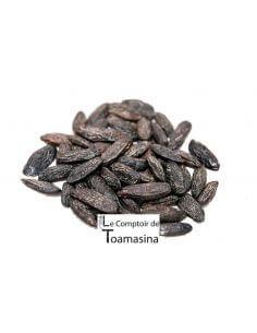 Acheter de la fève tonka en ligne au meilleur prix