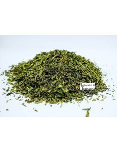 Green Tea Sencha Selection