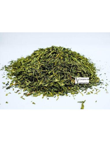 Green Tea Sencha Selection
