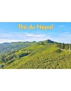 Thé du Népal vente en ligne