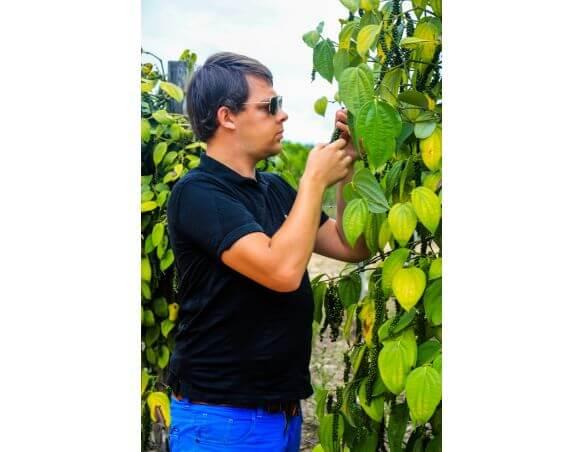 Arnaud em uma plantação de pimenta