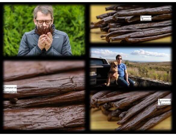 Arnaud chercheur de gousses de vanille