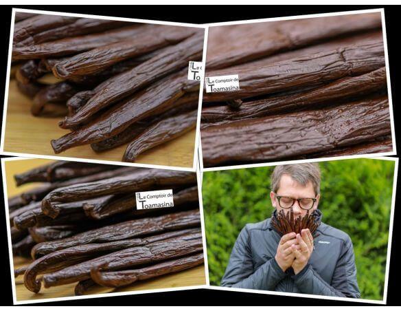 Chercheur d'épices - Gousses de vanille de Tahiti