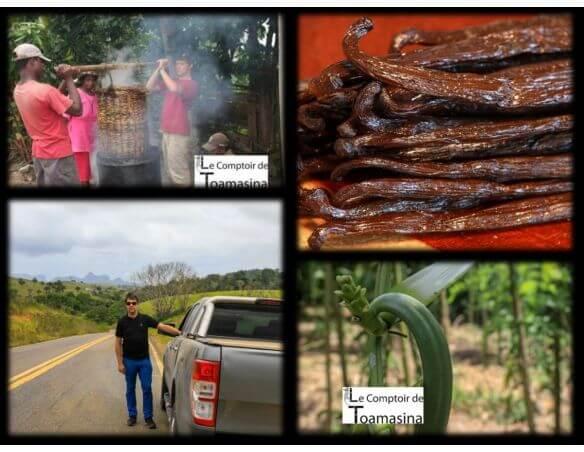 Gousses-vanille-bourbon-Madagascar-qualité-gourmet-vanille-noire-directement-du-producteur