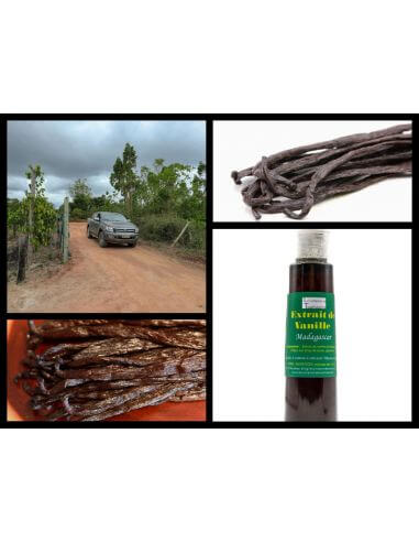 extrait de vanille de Madagascar