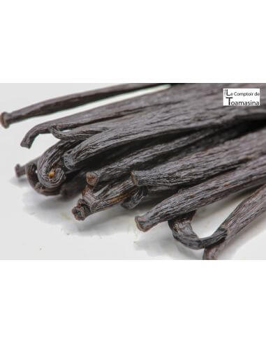 2 Vanilla pods from New Guinea