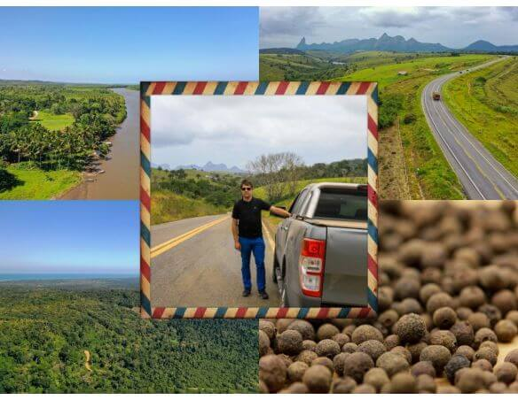 Poivre Jamaïque - Achat et vente piment de la jamaïque en grain