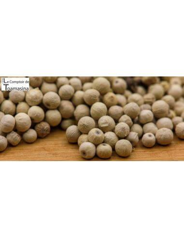 Sri Lanka White Pepper (Ceylon)