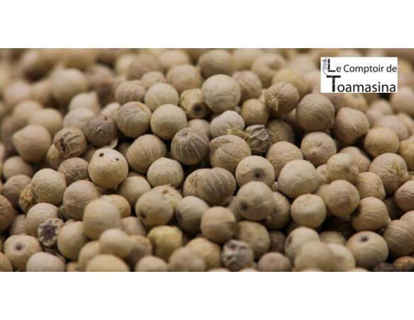 Poivre blanc du Sri Lanka bio - Achat de poivre blanc
