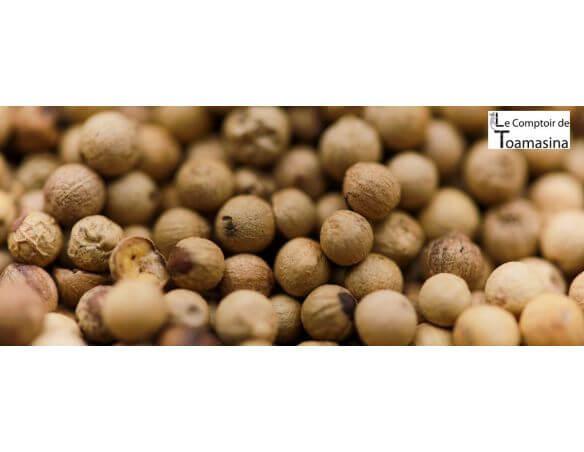 Poivre blanc Muntok en grains, achat, vertus, utilisation