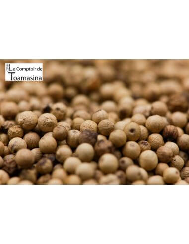 Muntok White Pepper