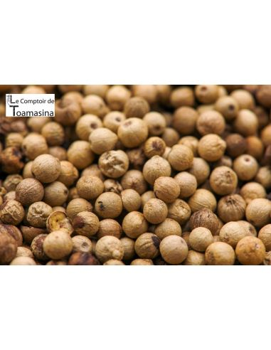 Muntok White Pepper 250g