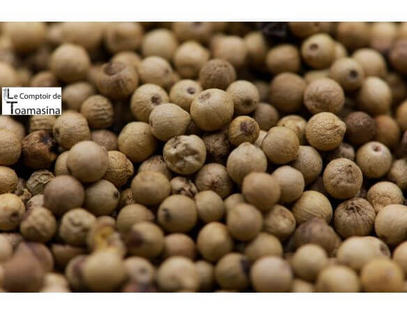 Poivre blanc, achat et conseil, large choix, poivre blanc en grain de toute beauté