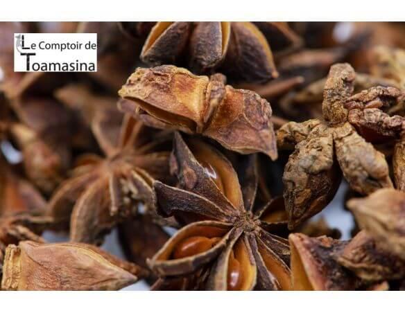 Badiane (anis étoilé ou poudre) - Achat, vente, usage et bienfaits