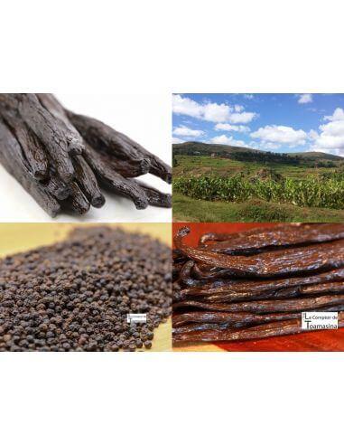 Baunilha e Especiarias de Madagascar