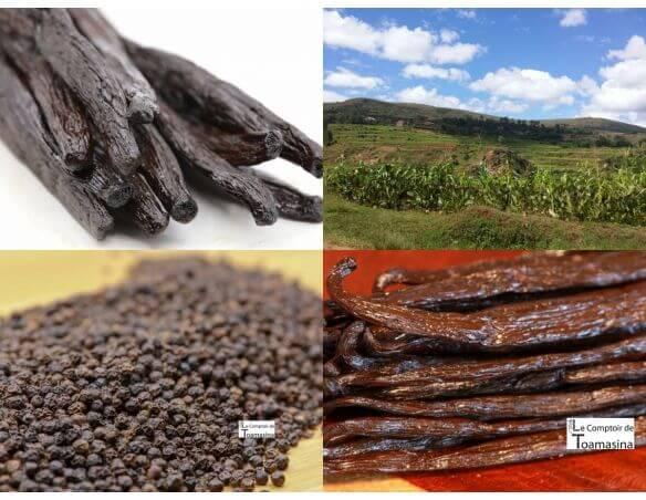Vanille et épices de Madagascar