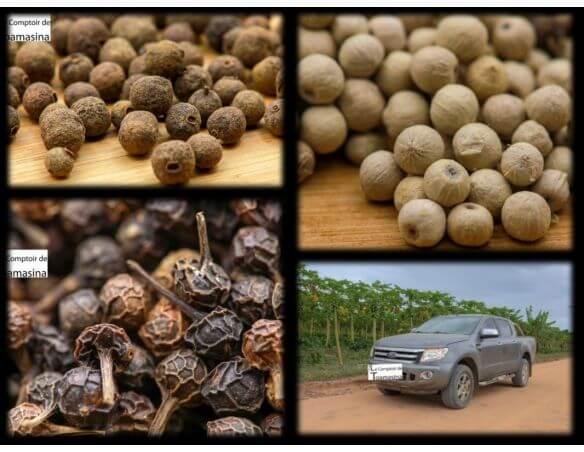 Coffret de Poivres 7 Format Economique - Coffret de poivres en grains pas cher