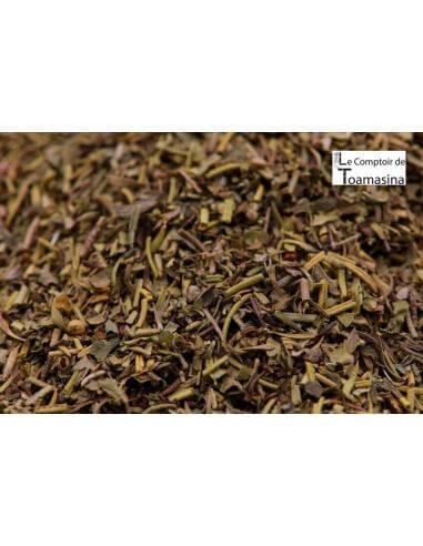 Herbes de Provence - Ervas da Provença