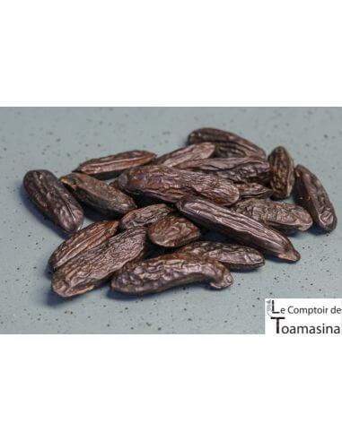 Tonka Bean From Amazon - Kilo