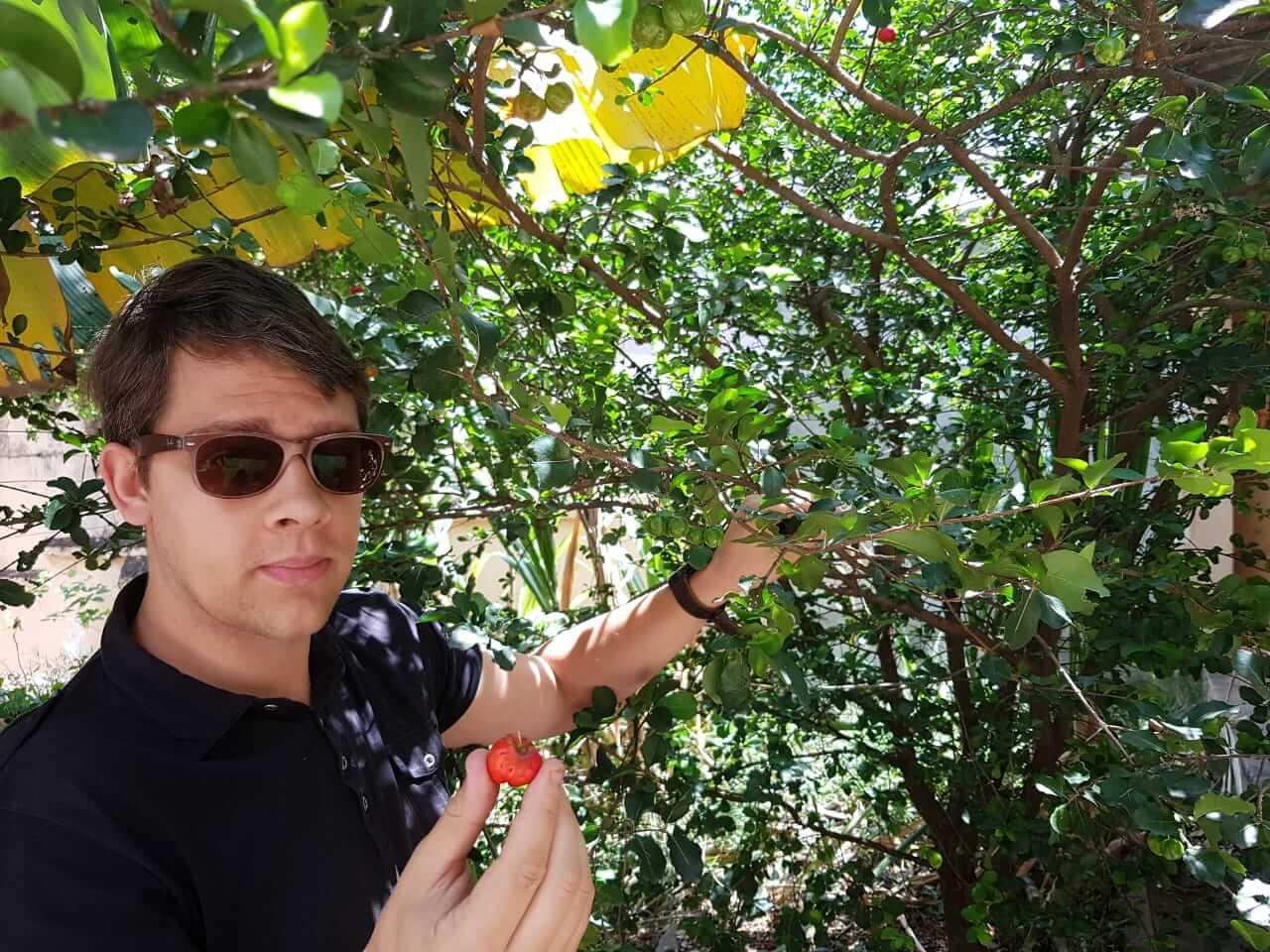 Arnaud Sion, Producteur et chercheur dacerola, vous dit tout pour acheter la meilleure cerise acerola bio du Brésil- Grossiste en acérola