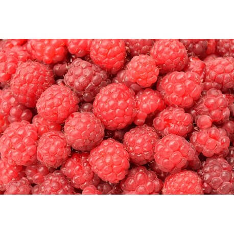 aroma-natural-foods-of-a-raspberry-pastry-raspberry extract