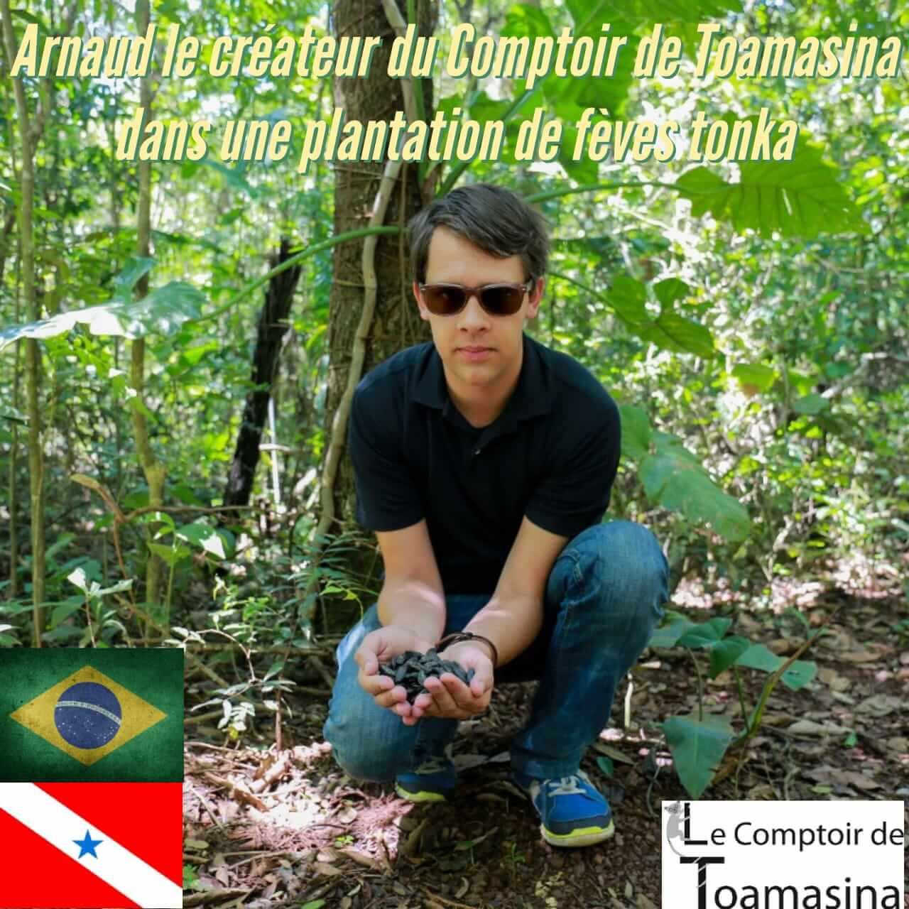 Achat et vente de fève tonka de la population indigène du Brésil