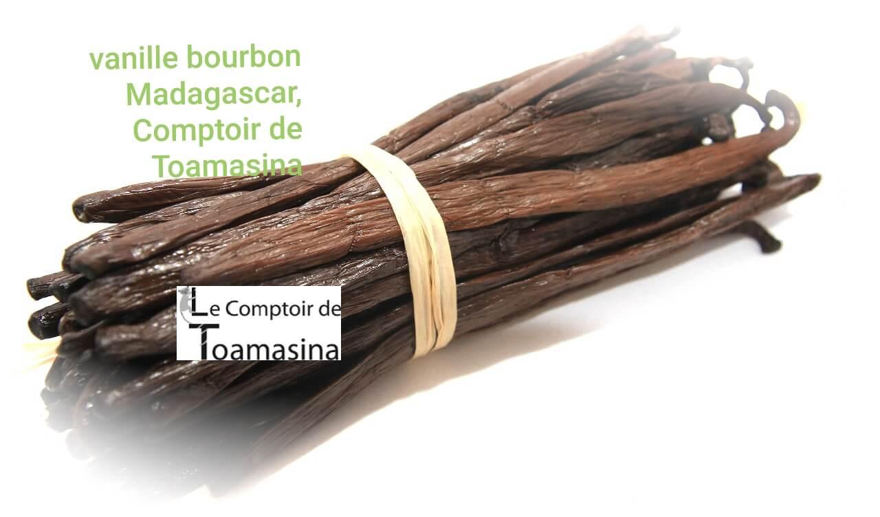vanille-bourbon-madagascar