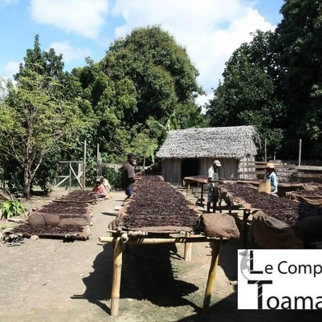 Producteur vanille de Madagascar