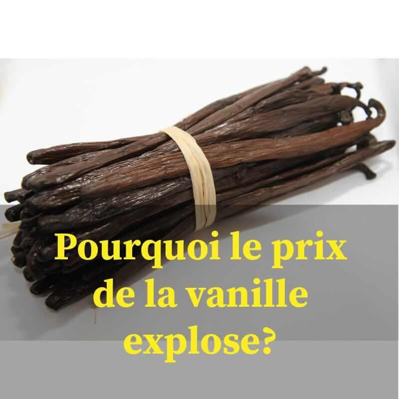 Gousse de vanille prix au kilo