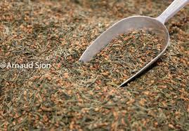 Thé Vert Japonnais Genmaicha, Achat et Vente de Thé Genmaicha, thé vert japonnais